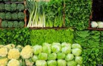 Healthy Happy Choice- Green Veggies