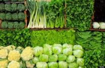 Healthy Happy Choice- Green Veggies