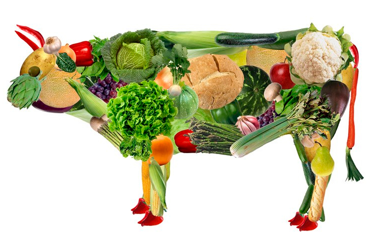 healthy-happy-choice-vegetariano.jpg